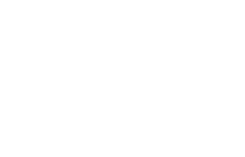 Lifestyle Collective